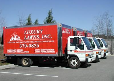 luxury lawns-large