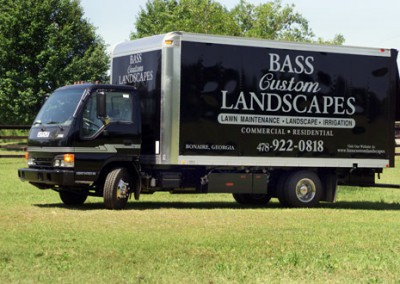 bass-large