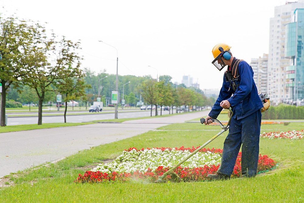 How To Get Commercial Lawn & Landscape Accounts Using This Free Online Tool…
